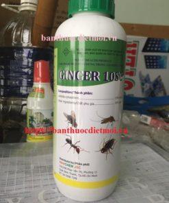 Thuốc diệt muỗi kiến gián Ginger 10SC